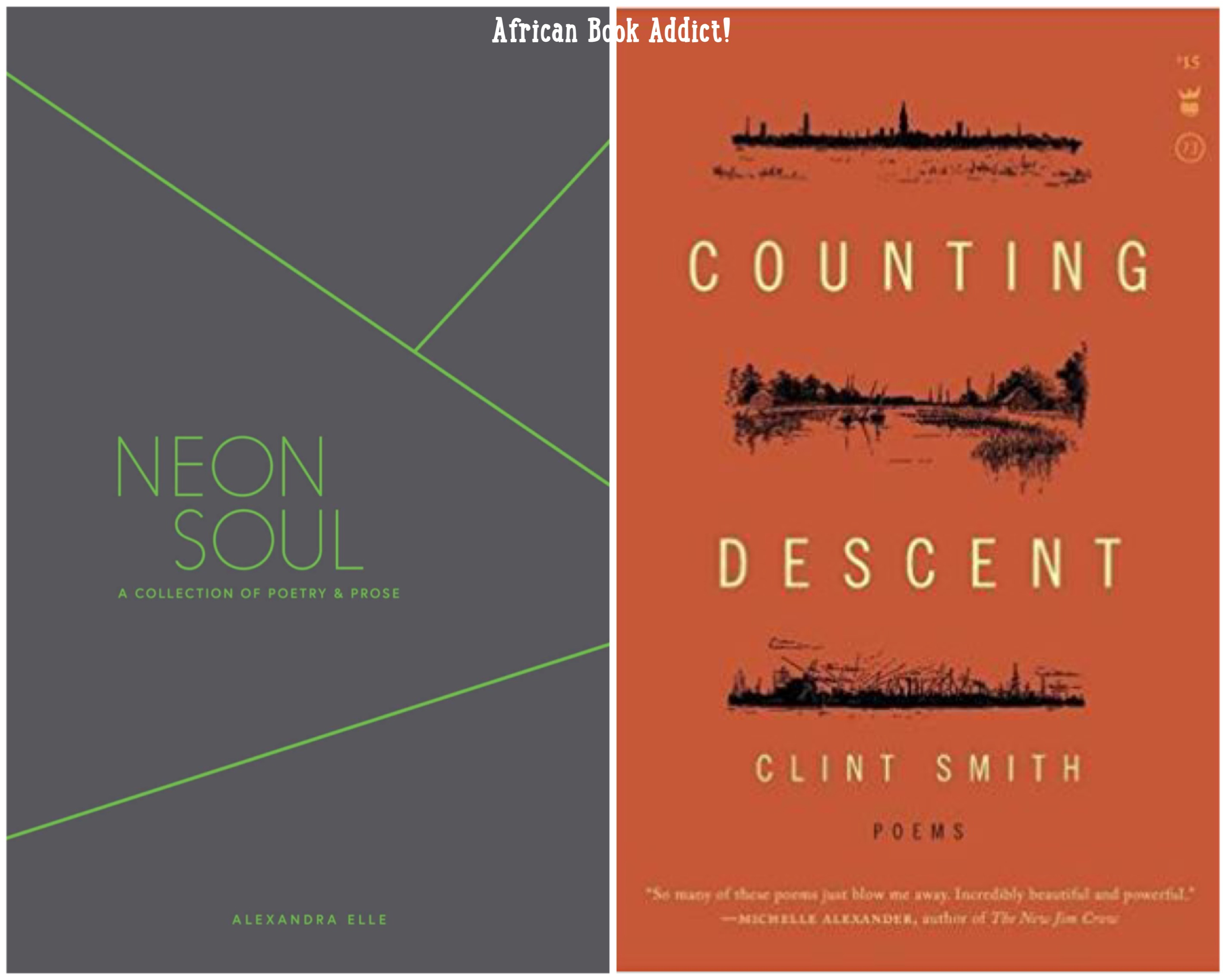 Home dear mr kourouma - Poetry Neon Soul Counting Descent Hey Everyone At The End Of My Review For Salt By Nayyirah Waheed I Listed A Bunch Of Contemporary Poets And
