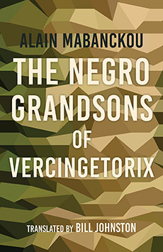 Read blurb/Purchase: The Negro Grandsons of Vercingetorix (Global African Voices)