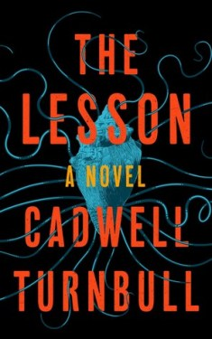 Read blurb/Purchase: The Lesson