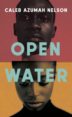 Read blurb/Purchase: Open Water