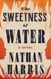 Read blurb/Purchase: The Sweetness of Water: A Novel
