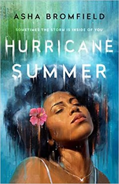 Read blurb/Purchase: Hurricane Summer: A Novel